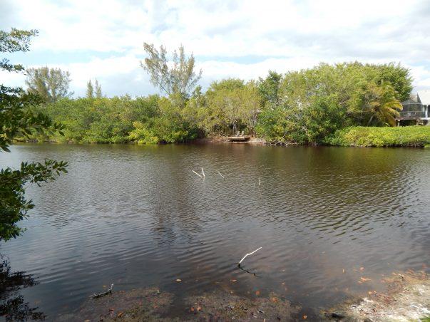 Sanibel Bayous: Lady Finger Lake