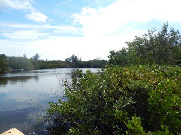 Dinkins Lake