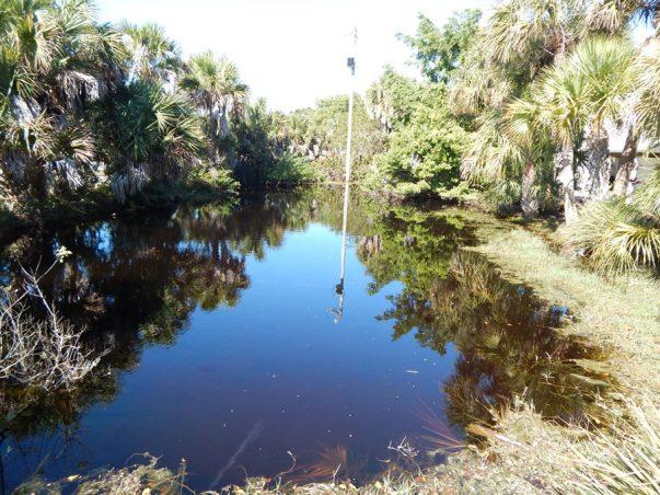Kearns: South Pond