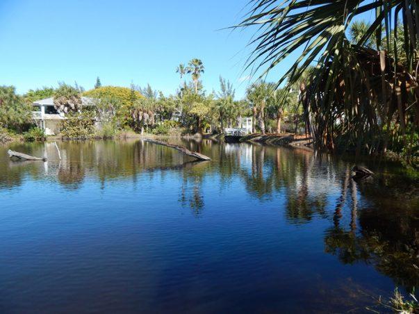 Kearns: North Pond