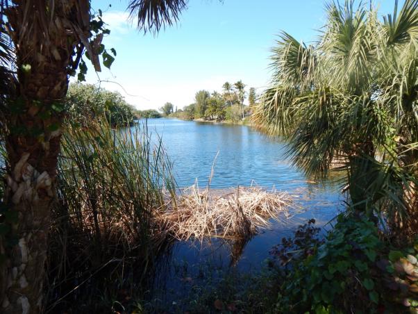 Lake Murex