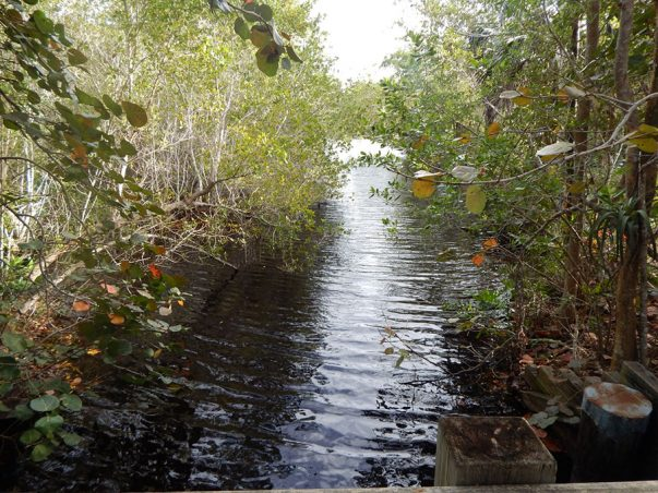 Gulf Pines: Sanibel Slough Gage Station