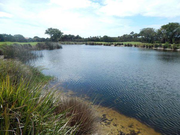 The Sanctuary: Lake 7