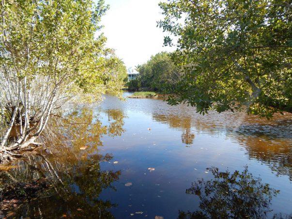 Seagull Estates: West Lake