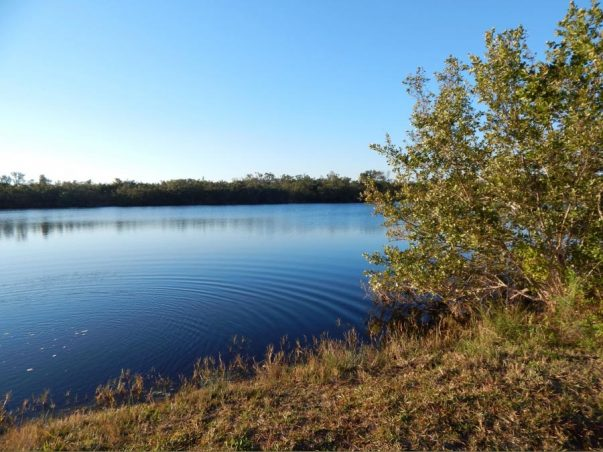 Bailey Tract: Smith Lake