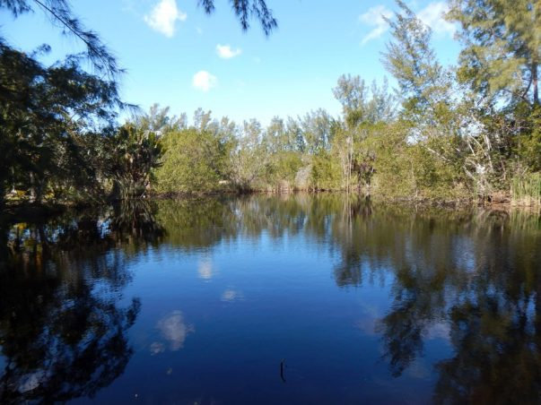 Twin Ponds (or Ranchoe Way)