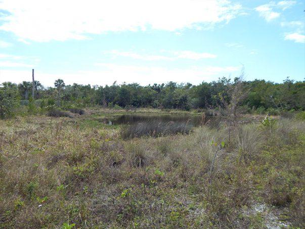 Sanibel Bayous Restortation Lake East