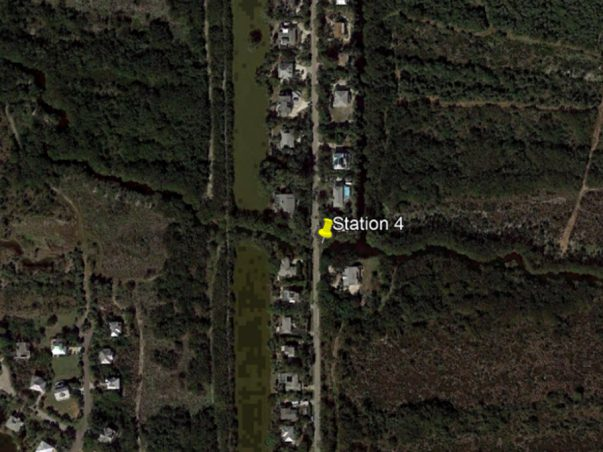 Sanibel Slough: Station 4